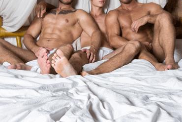 gay hotline